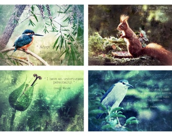 A set of 4 Nature Journaling Cards