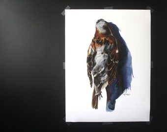 """Sparrow Large Scale Watercolor Print- 18""""x24"""""""
