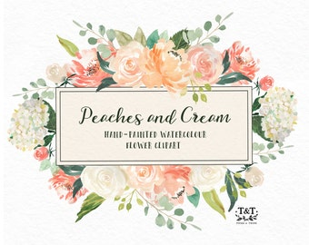 Flower Watercolor Clipart, Hand Painted Graphics - Peaches and cream. Digital graphic download with leaves, roses, peonies and hydrangeas.