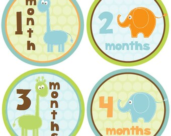Monthly Baby Boy Stickers Baby Month Stickers Baby Shower Gift Monthly Stickers Elephants Milestone Stickers Giraffes (John)