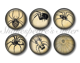 Spider Magnets - Fridge Magnets - Gothic Decor - 6 Magnets - 1.5 Inch Magnets - Kitchen Magnets