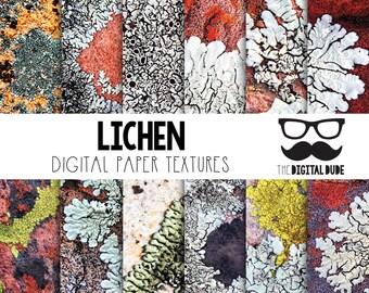 Premium Digital Paper Set, Lichen, Digital Paper, Scrapbook Paper, Lichen Texture, Instant Download