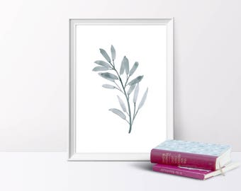 Olive Branch Leaves,Eucalyptus, Watercolour Illustration, A4/A5 Print