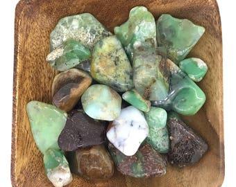 Chrysoprase Tumbled - Tumbled Chrysoprase - Heart Chakra - Sacral Chakra - Reiki - Energy Healing - Crystal Healing