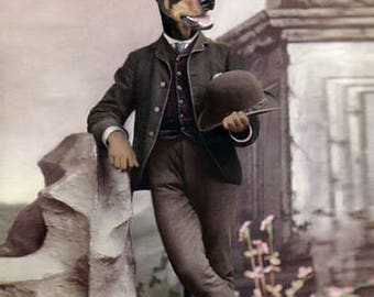 Mr. Doberman, Dog in clothes, Doberman Pinscher art, Anthropomorphic, Whimsical Dog Art, Altered Photo, Photo Collage, Funny Note Cards