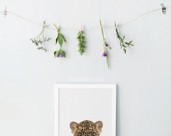 Baby Leopard print - Nursery animals prints - Baby animals - Nursery decor - Gender neutral nursery art - Nursery wall art - Printable