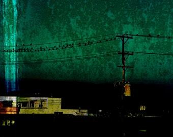 Industrial Birds- Fine Art Photograph on Metallic Paper
