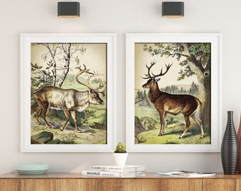 DEER Print SET of 2, Deer and Elk Poster, Forest Animal Print Set, Vintage Deer Painting, Moose Print