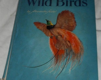 A Child's Book of Wild Birds by Alexander Feidel Vintage Maxton Books for Young People