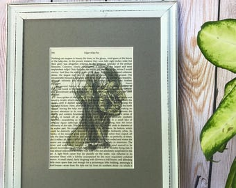 Human Head Muscle Edgar Allan Poe Print / Anatomy / Literature Print / Book Print / Librarian Gift / English Major / Med Student