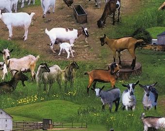 Farm Animals - Per Yd - Elizabeth's Studio - Farm scenes, goats, barns