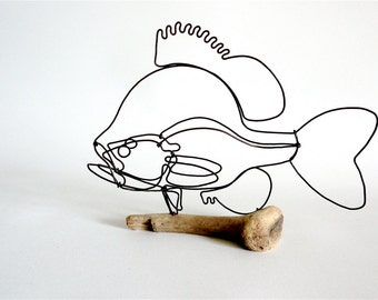 Sunfish Wire Sculpture, Fish Wire Art, Fish Art, 480237225