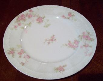 Antique Haviland France Haviland & Co. Limoges Hand Painted Porcelain Salad Plates - Made in France - Early 1900's