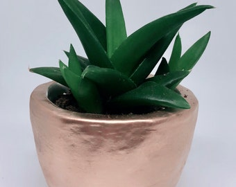 Small Gold Pot for Succulents