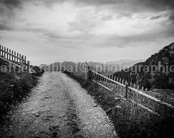 The Path Photo Fine Art Photography Black and White Zen Peaceful Scenery German Alps Photo Altitude Wooden Fence Inspiring