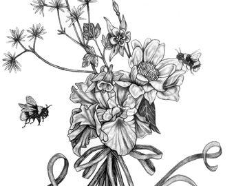 Bumble Bee Pencil Drawing Illustration (original) - Pollinators 1