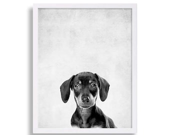 Puppy Dachshund Print Baby Animal Nursery Prints Puppy Prints Dog Art Dog Portraits Gray Nursery Decor Animal Nursery Art Nursery Ideas