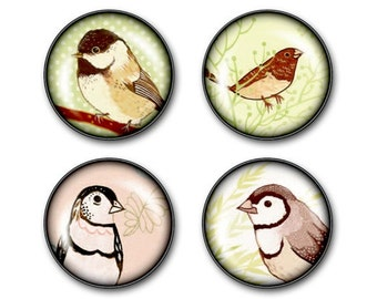 Decorative magnets, cute gifts for mom - BIRD MAGNETS - glass magnets, Happy birthday gift for mom, refrigerator magnets, mother in law