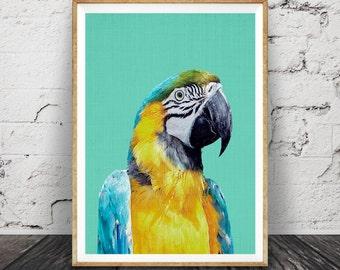 Tropical Bird Print, Parrot Wall Art, Bird Photography, Macaw Parrot, Large Printable Poster, Aqua Blue and Yellow Tropical Wall Art Decor
