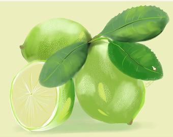 Lime Card  5.5 x 4.25