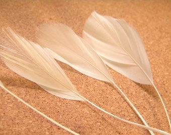 has 5 feather teal white shank - 14 cm 19 cm - liked 04
