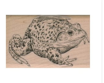 Rubber stamp   frog toad  stamping supplies The Wind in the Willows wood Mounted  scrapbooking supplies  9223