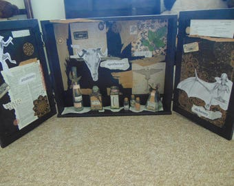 Vintage Apothecary Curio Cabinet Gothic Cabinet de Curisoitie