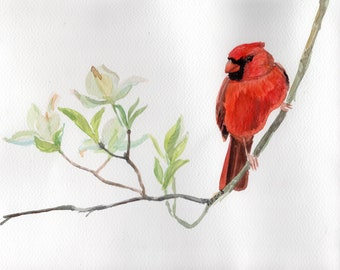 Red Cardinal Bird on white flower twig minimalistic Original watercolor painting