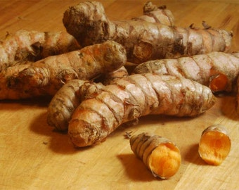 8 Healthy Fresh Turmeric Roots ,Whole,Raw ,Organic . Juice it,brew it or plant it 4 oz to 5 oz