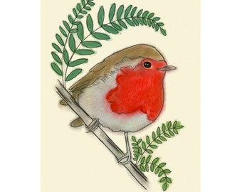 "Red Robin Bird Art print -  Roland the Robin 4 for 3 SALE (4"" X 6"" print)"