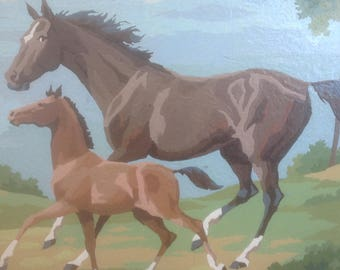 Horse and Colt Paint by Numbers