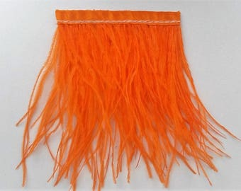 strand of orange ostrich feather band 8cm