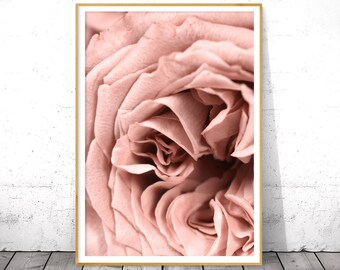 Blush Pink Floral Wall Art Peony Printable Poster Above Bed Art Peony Digital Download Print Flower Boho Decor Botanical Photography Roses