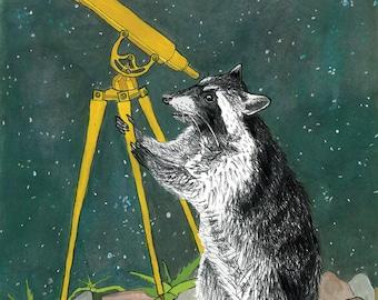 Animal Messengers Print -- Raccoon