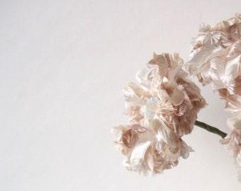 Champagne Fluffy Flower, wedding decor, home decor