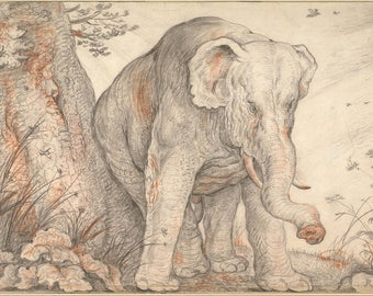 Roelant Savery: An Elephant Rubbing Itself Against a Tree. Fine Art Print/Poster (004407)