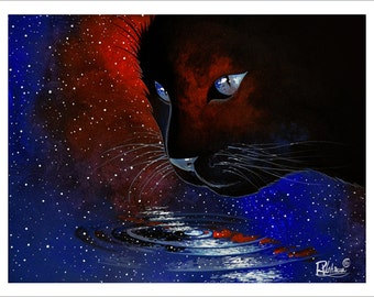 Cat in cosmos