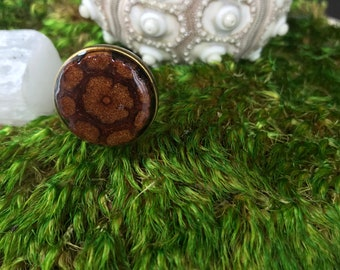 Ayahuasca Ring