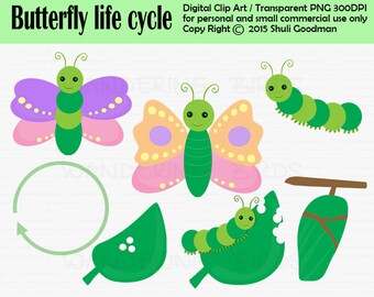 Butterfly life cycle Clipart For Personal and Commercial Use - Digital Clip Art  - Instant Download, butterfly, caterpiller, spring