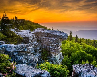 Sunrise at Bear Rocks Preserve,  at Dolly Sods, Monongahela National Forest, West Virginia. Photo Print, Metal, Canvas, Framed.