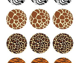"2"" Animal Print Edible Images Oreo Topper"