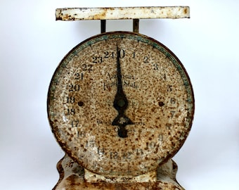 American Family Kitchen Scale - 1906