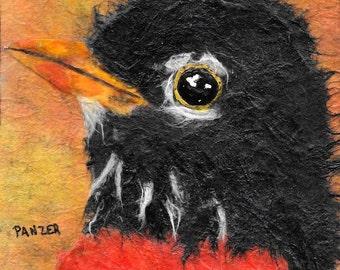 Print Robin Harbinger of Spring  Giclee PrintBird Avian Owl Owlet Orange and Yellow Square Art