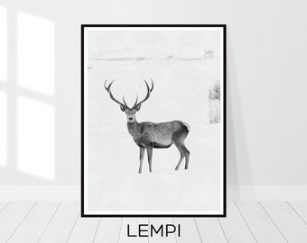 Deer Print, Deer Photography, Deer Art, Black and White, Animal Print, Printable Wall Art, Woodlands Decor, Printable Art, Instant Download