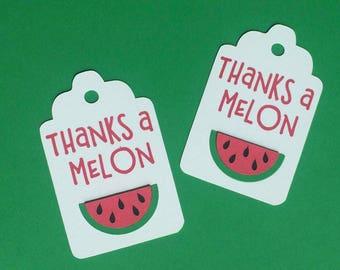 Thanks a Melon Favor Tags, Set of 12 Watermelon Gift Tags, One in a Melon Favor Tags