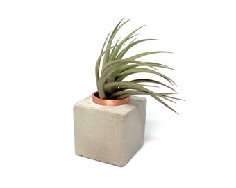 TINY concrete and copper cube planter or air plant holder