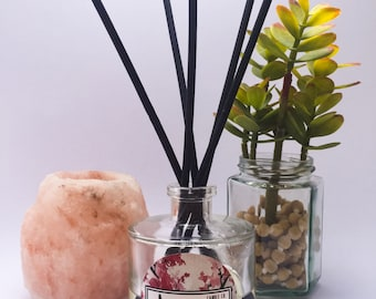 Reed diffuser for home fragrance - Long lasting scent for 6 months