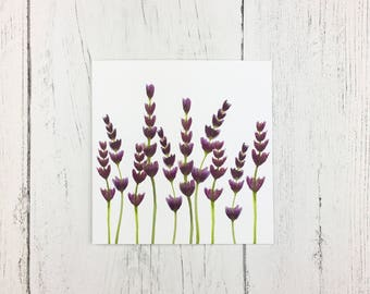 Lavender Greetings Card For Birthday / Mothers Day Card / Invitation Card / Card For Gardener / Card For Garden Lover / Floral Card For Mum