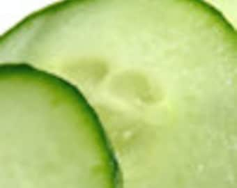 Cucumber Melon Fragrance Oil Low Shipping
