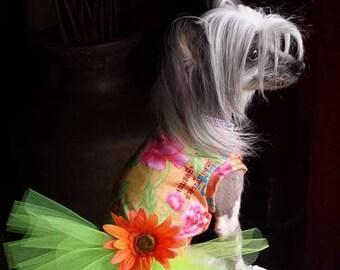 Fashion Tutu Dog Dress -  Lime Spandex